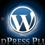 wordpress plugin 150x150 5 Great Plugins for WordPress With High Success