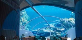underwater-hotel-fiji-room