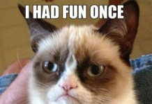 cat scowled Grumpy Cat