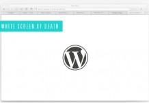 white-screen-error-in-wordpress