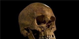King Richard III Skeleton Found