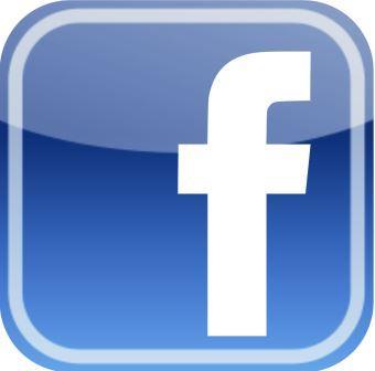Bulk Increase In Facebook Home Downloads