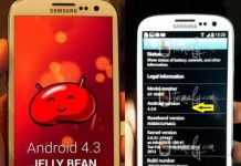 Galaxy SIII 4.3 Jelly Bean