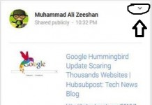 google+embed post