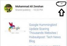 google+embed post